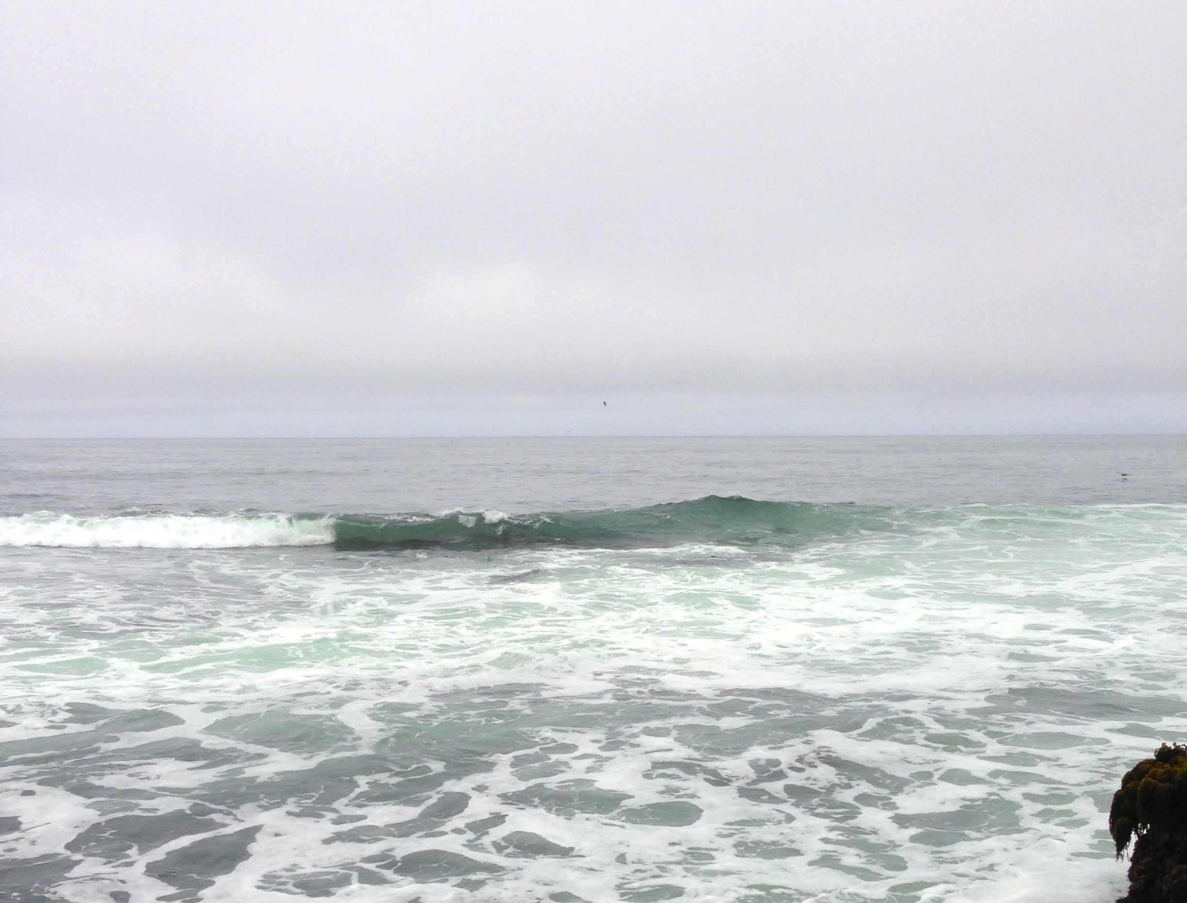 Bucket List: Mavericks at Half Moon Bay